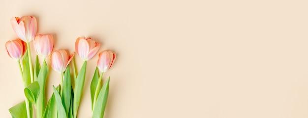 Schöner hintergrund mit frühlingsblumen auf pastell. frühlingskonzept