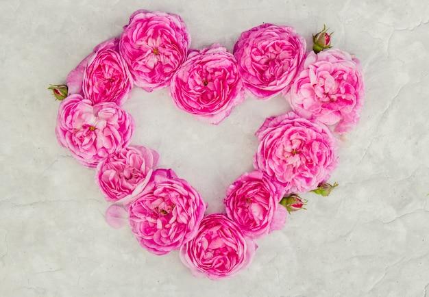 Schöner hintergrund mit rosa rosen. selektiver fokus