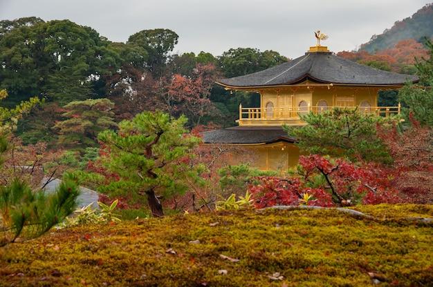 Schöner kinkakuji, goldener pavillontempel, umgeben von herbstgarten an bewölktem tag, kyoto.