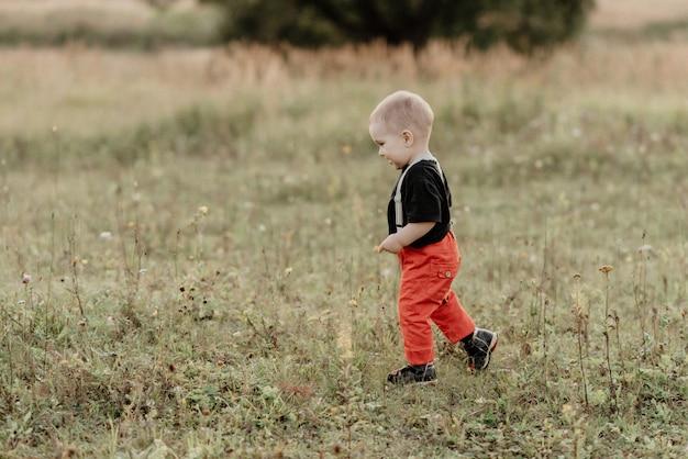 Schöner kleiner junge, der auf das gras auf dem feld geht