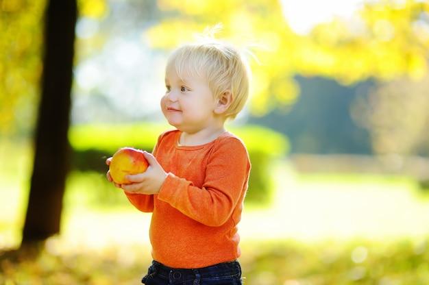 Schöner kleinkindjunge, der draußen frische biobirne isst