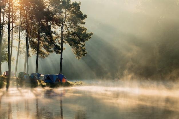 Schöner landschaftsmorgensonnenaufgang über dem strom und kiefer, die im see kampieren