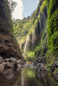 Schöner madakaripura-wasserfall, der in felsiges tal fließt