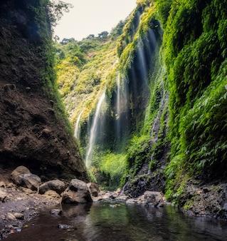 Schöner madakaripura-wasserfall, der in grünes tal fließt