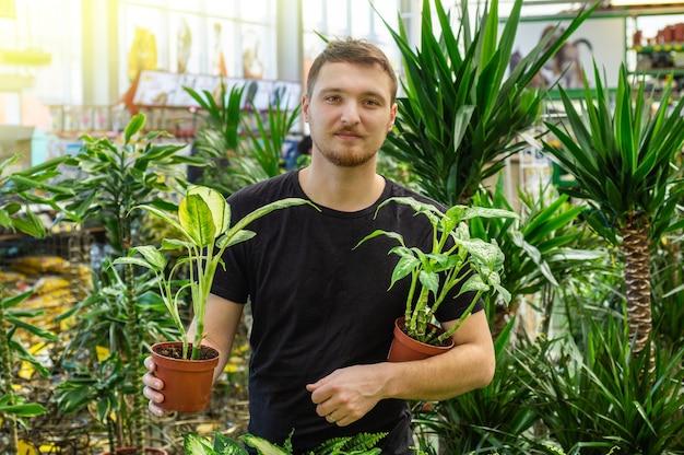 Schöner männlicher kunde wählt ficuspflanzen im einzelhandelsgeschäft. gartenarbeit im gewächshaus. botanischer garten, blumenanbau, konzept der gartenbauindustrie