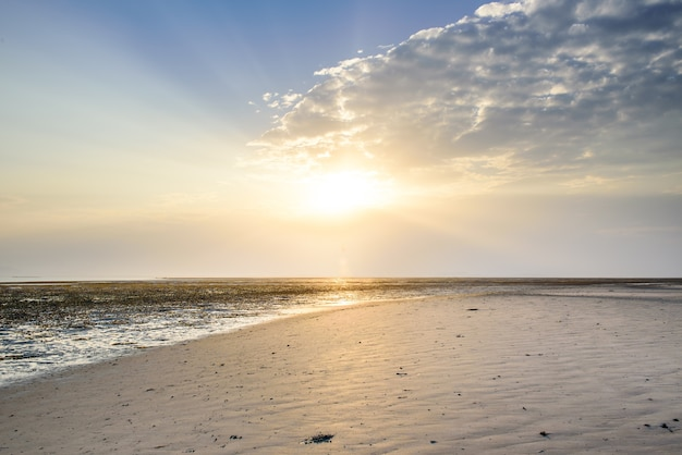 Schöner niedriger gesichtspunkt entlang strand bei ebbe heraus zum meer mit vibrierendem sonnenaufganghimmel