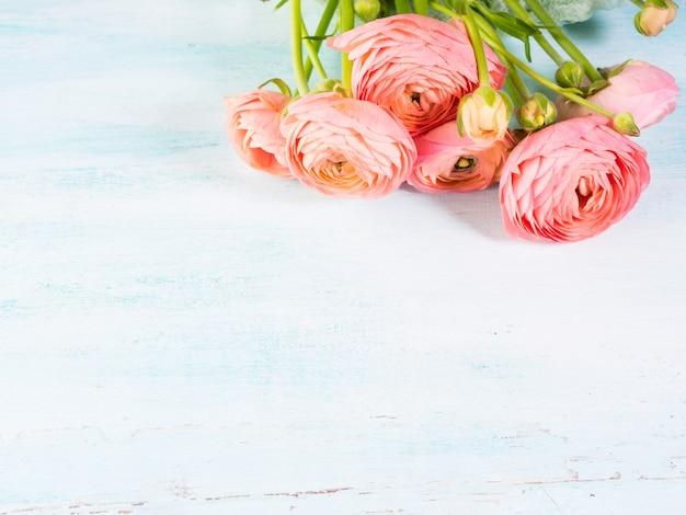 Schöner rosa ranunkelblumenstrauß auf türkis
