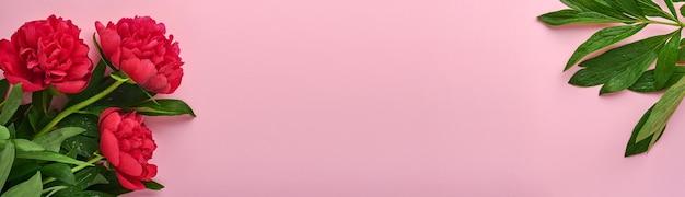 Schöner roter pfingstrosenblumenstrauß über rosafarbenem hintergrund, draufsicht, kopienraum, flach. valentinstag, muttertag hintergrund. banner. platz kopieren.