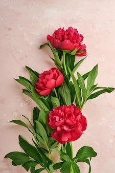 Schöner roter pfingstrosenblumenstrauß über rosafarbenem hintergrund, draufsicht, kopienraum, flach. valentinstag, muttertag hintergrund.
