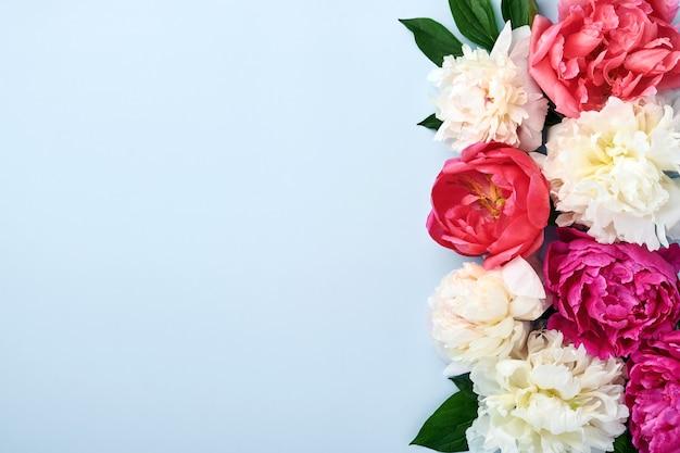 Schöner roter, rosa und weißer pfingstrosenblumenstrauß über blauem hintergrund, draufsicht, kopienraum, flach. valentinstag, hochzeit und muttertag hintergrund.