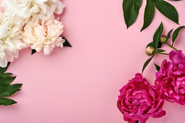 Schöner roter, rosafarbener und weißer pfingstrosenblumenstrauß über rosafarbenem hintergrund, draufsicht, kopienraum, flach. valentinstag, hochzeit und muttertag hintergrund.