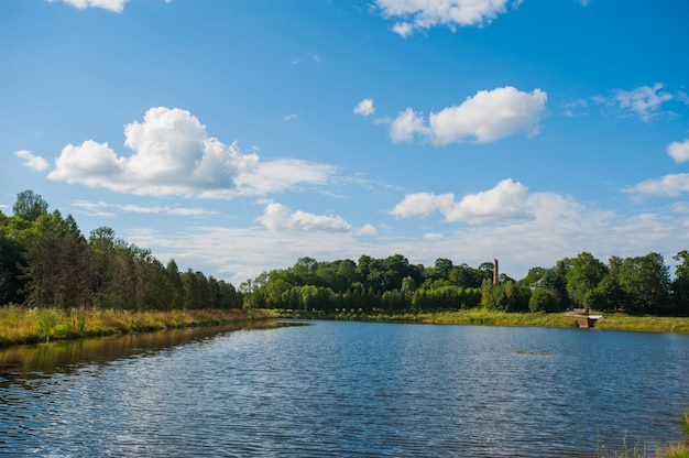 Schöner ruhiger see mit bäumen auf dem horizont und weißen geschwollenen wolken im himmel. ruhiger sommertag in der hütte. große grüne bäume an einem see