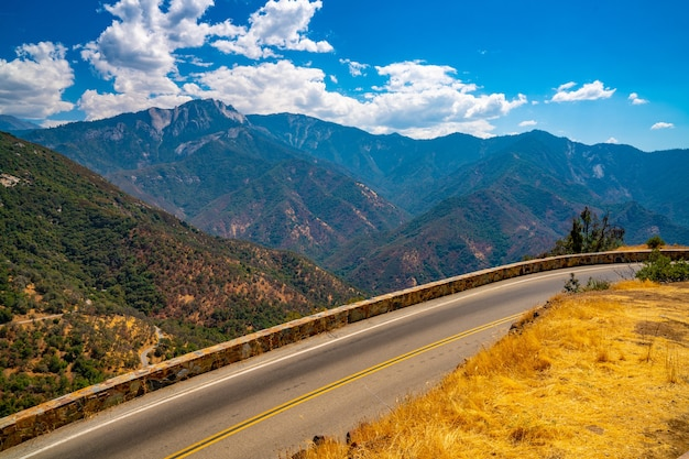Schöner schuss des sequoia-nationalwaldes auf sierra-gebirgshintergrund
