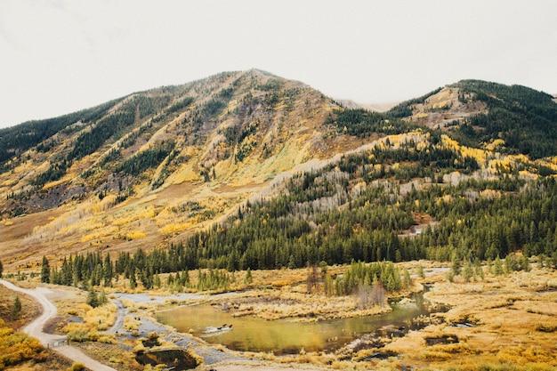 Schöner schuss des trockenen grasfeldes mit teichen nahe bewaldetem berg unter einem bewölkten himmel