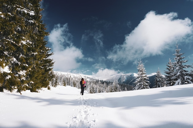 Schöner schuss einer frau, die in den schneebedeckten karpatengebirgen geht, umgeben von bäumen in rumänien