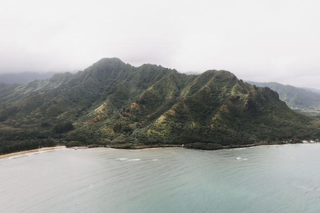 Schöner schuss einer hockenden löwenwanderung kaaawa in hawaii usa