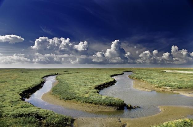 Schöner schuss einer landschaft eines grünen feldes mit wasserströmen dazwischen