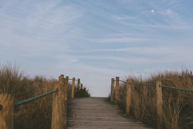 Schöner schuss einer promenade in den feldern voll des getrockneten grases unter dem blauen himmel