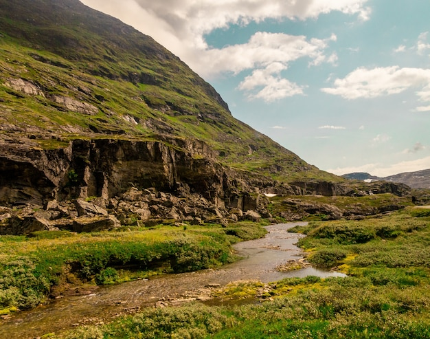 Schöner schuss eines fließenden flusses nahe hohen felsigen bergen in norwegen