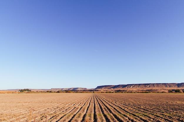 Schöner schuss eines großen landwirtschaftlichen feldes mit erstaunlich klarem blauem himmel