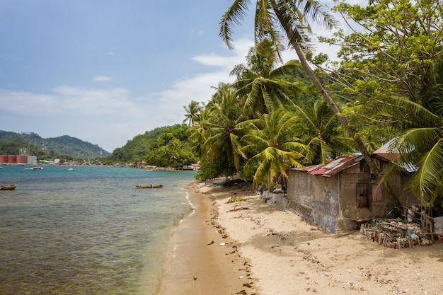 Schöner schuss eines kleinen hauses nahe dem ufer des meeres, umgeben von palmen in indonesien