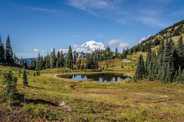 Schöner schuss eines kleinen teiches nahe bäumen mit einem schneebedeckten berg in der ferne unter blauem himmel