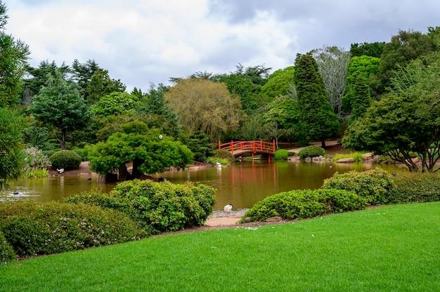 Schöner schuss eines öffentlichen parks in toowoomba, queensland, australien