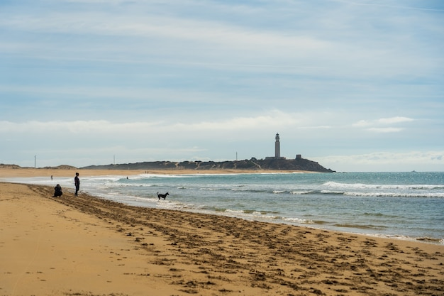 Schöner schuss eines sandstrandes in zahora spanien