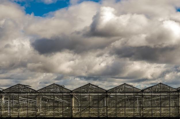 Schöner schuss von gewächshäusern unter einem blauen bewölkten himmel