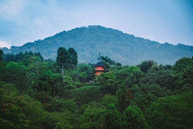 Schöner schuss von grünen hohen bäumen mit chinesischem gebäude in der ferne und einem bewaldeten berg