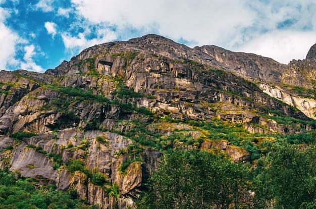 Schöner schuss von hohen felsformationen bedeckt mit gras in norwegen