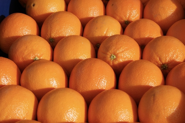 Schöner schuss von orangen, die zusammen angeordnet sind und unter der sonne leuchten