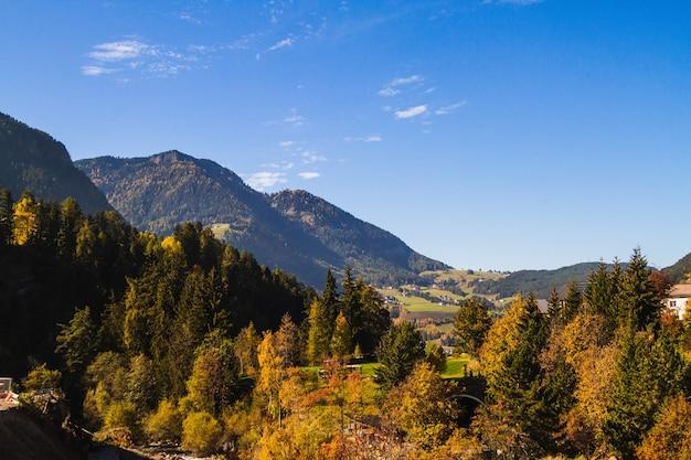 Schöner schuss von verschiedenfarbigen bäumen nahe dem bewaldeten berg bei dolomiten italien