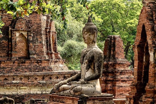 Schöner schuss von wat phra mahatat phra in thailand