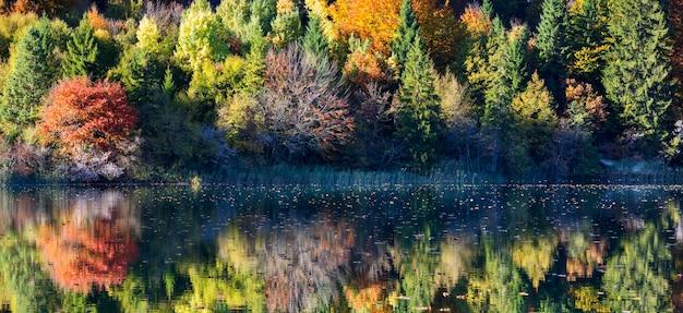 Schöner see im nationalpark plitvice, kroatien