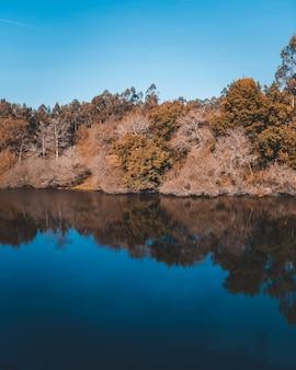 Schöner see mit dem spiegelbild einer klippe mit vielen bäumen an der küste