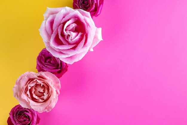 Schöner sommerhintergrund mit rosa rosen auf einem modernen gelben hintergrundfoto mit freiem raum für