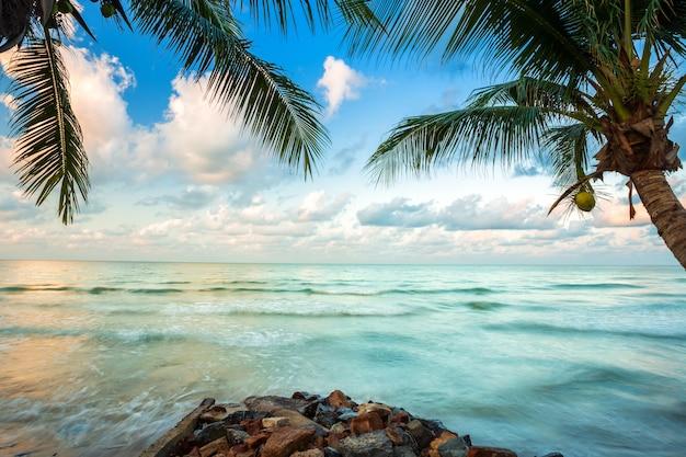 Schöner sonnenaufgang des frühen morgens über kokosnussbaum mit dem meer