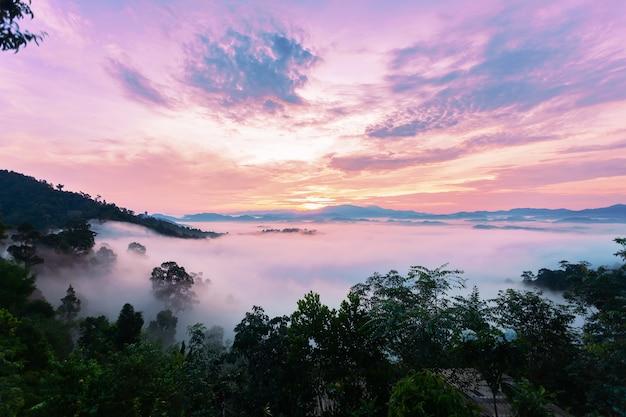Schöner sonnenaufgang oder sonnenuntergang mit dem nebel, der in die schöne landschaft des berges fließt