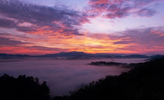 Schöner sonnenaufgang oder sonnenuntergang mit dem nebel, der in die schöne landschaftslandschaft des berges fließt