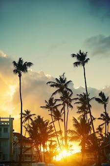 Schöner sonnenuntergang an einem strandresort in den tropen