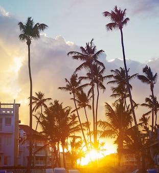 Schöner sonnenuntergang an einem strandurlaubsort in den tropen