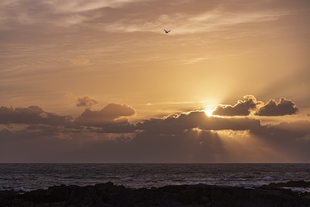 Schöner sonnenuntergang über dem ozean am horizont mit der sonne, die durch große wolken scheint