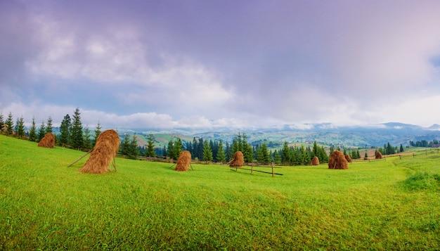 Schöner sonniger tag ist in berglandschaft.