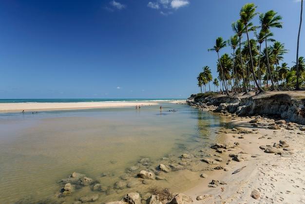 Schöner strand conde in der nähe von joao pessoa paraiba brasilien