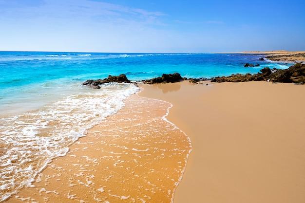 Schöner strand in fuerteventura