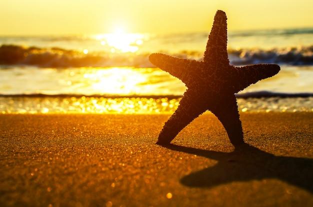 Schöner strand mit sonnenaufgang