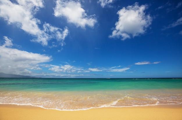 Schöner strand mit türkisfarbenem wasser und gelbem sand