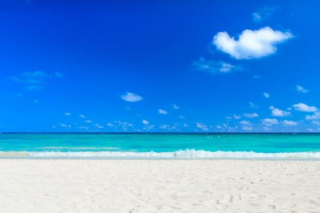 Schöner strand und tropisches meer. reiselandschaft