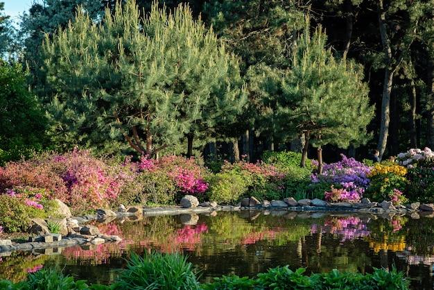 Schöner teich unter blühenden büschen von nadelbäumen im garten. das konzept der natürlichen landschaftsgestaltung